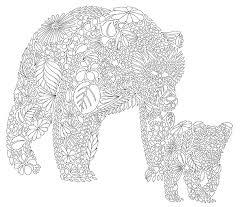 Millie Marottas Animal Kingdom Colour Me Draw Secret Garden Coloring BookAnimal