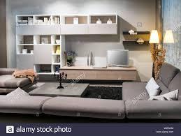 modernes wohnzimmer mit bequemen polstermöbeln braune sofas