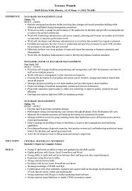 Download Database Management Resume Sample As Image File