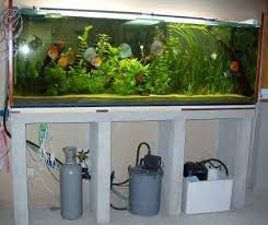 aquarium dans le mur construire un grand aquarium p2 aquariums de véronique