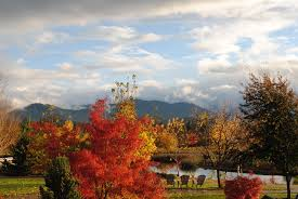 Pumpkin Patch Medford Oregon by Fall Colors 2014 Oregon Fall Foliage