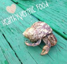 Halloween Hermit Crab Molting by How To Spoil Your Hermit Crabs Food Edition 11 Steps With Pictures