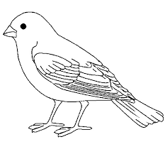 sparrow clipart black and white 3