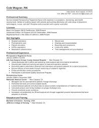Sample Registered Nurse Resume Newly Without Experience Philippines