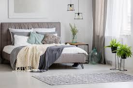 pflanzen im schlafzimmer darauf musst du unbedingt achten