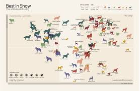 Do All Big Dogs Shed by Big Data Dog Graph Popularity Of Dog Breeds Mapped Against Their