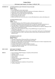 Junior HR Resume Samples | Velvet Jobs
