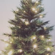 Outdoor Christmas Trees With Led Lights Triachnidcom