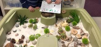 Do Hermit Crabs Shed Their Legs by Our Hermit Crab Terrarium Pets Pinterest Hermit Crab
