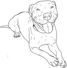 Pit Bull Coloring Page