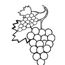 A Sweet Grapes Coloring Pages