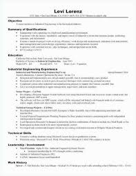 Director Of Marketing Resume Summary Beautiful A 42 Grapher Examples