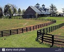 Black Fences And A Horse Barn With Cupolas On The Bluegrass ... There Are Some Of These Barn Quilts Here In Southern Indiana And I The Hitchin Post Venue Junction City Ky Weddingwire Sentinels Memory Kentuckys Tobacco Barns Gardens To Gables Summit Musings Kentucky Barn Reclaimed Wood Fniture Floors Exploring An Old But Functional Youtube Tag Wallpapers Bethel Christian Church Cemetery Building Black Robot Monkeys Prickel Wedding Mchales Events Catering At Cedar Grove Greensburg This Old Weathered Countryside Stock Photo