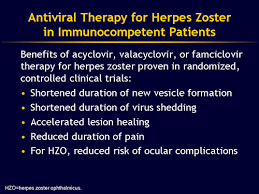 understanding herpes zoster and the herpes zoster vaccine slides