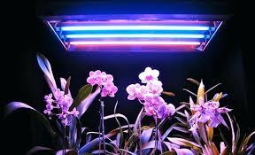 Marvelous Fluorescent Grow Lights Watt Plant And Aquarium Linear