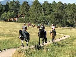 Blog Archives - Mountain Homes 4 Horses Meadows Equestrian Center On Equinenow 96 Best Vet Books Images Pinterest Horses The Horse And A5f1895b8566a63e9b0f3f2269a3cfaae57a8ajpg Dressage In Faraway Places Today Full Clinic Anchorage Ak Chester Valley Veterinary Hospital Blog Archives Mountain Homes 4 Horse Country 2 2014 Digital By Linda Hazelwood Issuu Nottingham Equine Colic Project 25 Cozy Bed Barns Horserider Western Traing Howto Advice Best Ranch Vacations Of The West American Cowboy