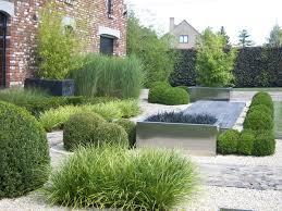Low Maintenance Contemporary Garden Mini