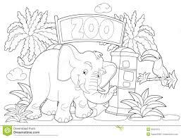 Libro Para Colorear Del Guardián Del Zoológico Divertido Un Hombre