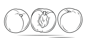 White Peach With Cross Section And Whole Fruit Coloring Page