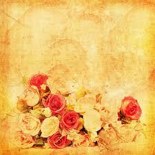 Vintage Rose Photographs