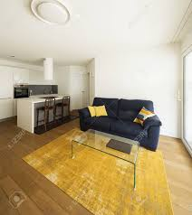 moderner offener raum mit eleganter küche und wohnzimmer niemand drinnen