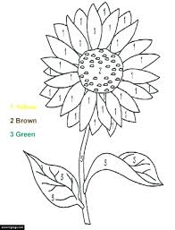 Sunflower Images To Color Simple
