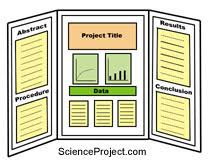 Some Schools Require Only One Science Project When The Students Are In 8th Grade Other School Have At Least Each Year