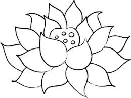 Lotus Clipart Image Coloring Page Of A Flower