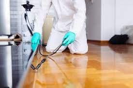 When Is It Time To Call A Pest Control Service? - South ... Bugster Bugs Pest Control Wordpress Theme For Home Mice Rodent Nj Get Free Inspection By Licensed Layla Mattress Review Reasons To Buynot Buy 2019 Mortein Powergard Flea Crawling Insect Bomb 2 X 150g 1count Repeller 7 Steps A Healthy Lawn Pride Holly Springs Sameday Service Triangle Family Dollar Smartspins In Smart Coupons App Spartan Mosquito Eradicator Yards Pack Rottler Solutions Experts In St Louis