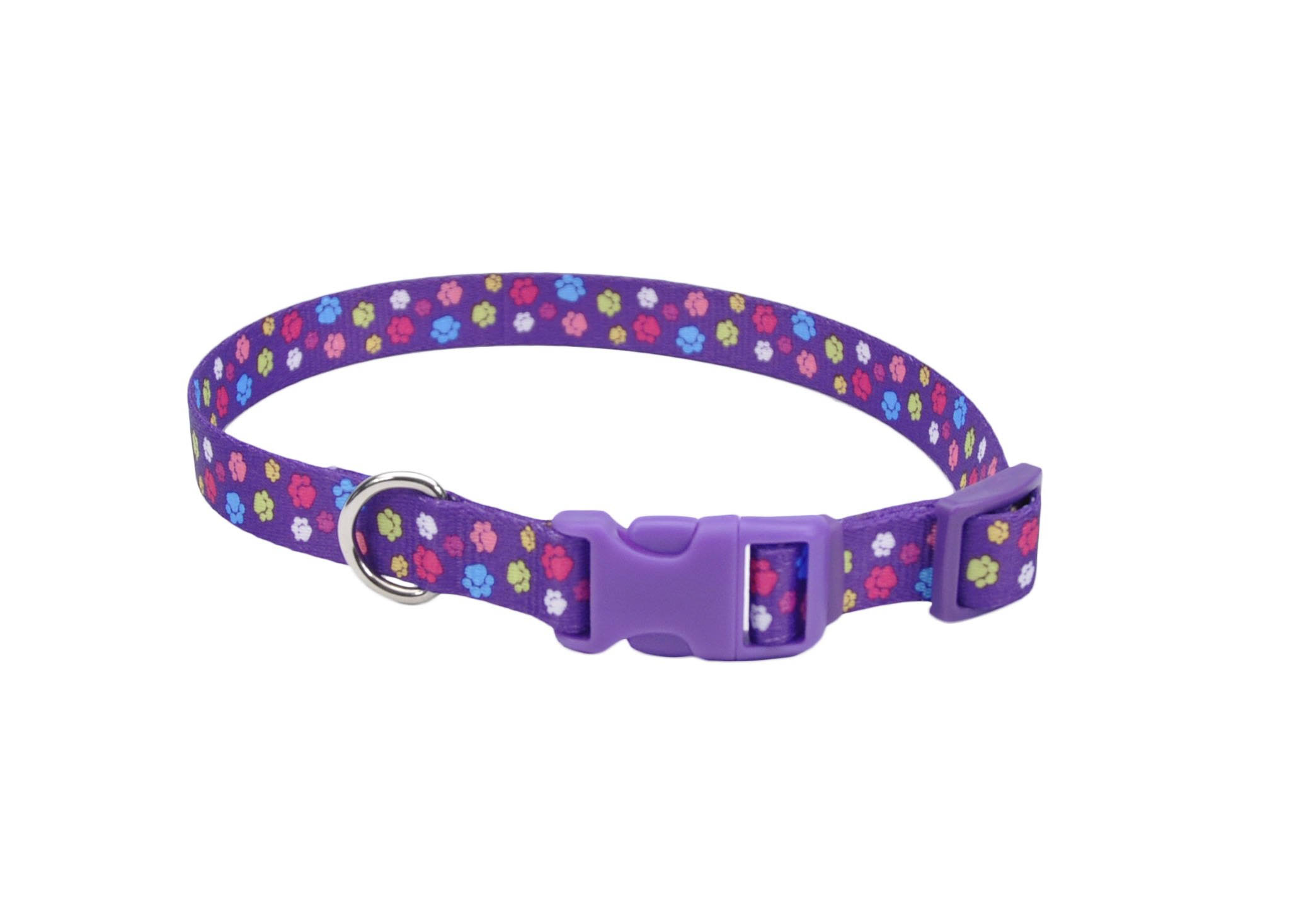 "Pet Attire Styles Special Paws Print Adjustable Dog Collar - Purple, 18-28"" x 1"""