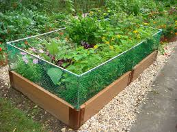 Greenes Fence Raised Garden Bed by Raised Garden Bed Kit With Fence Fence And Fencing