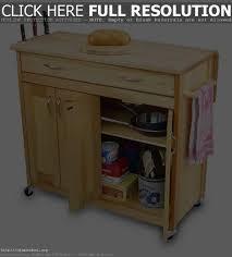Kitchen Pantry Storage Cabinet Free Standing by Free Standing Cabinets For Kitchen Maxbremer Decoration