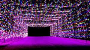 Mr Jingles Christmas Trees Gainesville Fl by 7 Best Places To See Christmas Lights In The Usa Wnem Tv 5