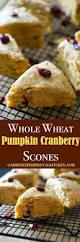 Pumpkin White Chocolate Chip Scones by Whole Wheat Pumpkin Cranberry Scones Carrie U0027s Experimental Kitchen