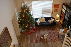 Stew Leonards Christmas Trees by Following The Walkers December 2014