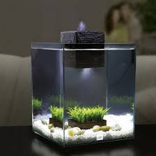 Spongebob Aquarium Decorating Kit by Zen Garden Aquarium Seasonal Style Let Spring In Collection