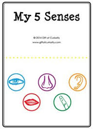 Five Senses Activities A Printable My 5 Activity Book Plus Link To