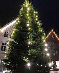 Christmas Tree Shop Syracuse Ny by Christmas Tree Shop Christmas Decorations U2013 Merry Christmas And