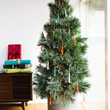 Xmas Tree Waterer by How To Care For A Living Christmas Tree Sunset