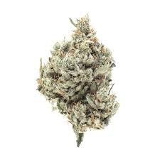 DGF XXX OG Essence Cannabis Dispensary