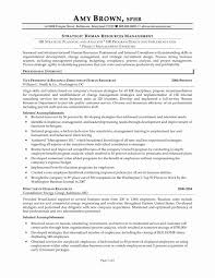 Resume Examples For Project Manager Valid New Sample Role At