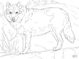 More Images Of Grey Wolf Coloring Pages