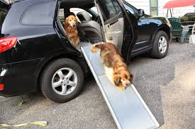 The Writer's Dog: Fun On The Go--Solvit Ramp And Side Door ... Amazoncom Pet Gear Travel Lite Bifold Full Ramp For Cats And Extrawide Folding Dog Ramps Discount Lucky 6 Telescoping The Best Steps And For Big Dogs Mybrownnewfiescom Stairs 116389 Foldable Car Truck Suv Writers Fun On The Gosolvit Side Door Tectake Large Big Dogs 165 X 43 Cm 80kg Mer Enn 25 Bra Ideer Om Ramp Truck P Pinterest Building Animal Transport Solution With 2018 Complete List Of 38 With Comparison