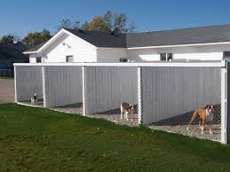 Cheap Shed Floor Ideas by Best 25 Outdoor Dog Kennels Ideas On Pinterest Outdoor Dog