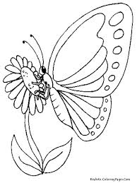 Printable Coloring Pages Flowers And Butterflies Hard Pretty Flower Realistic Butterfly