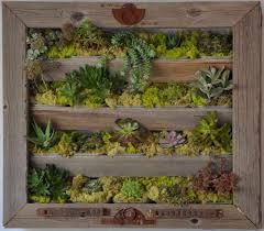 Living Wall Created By Brock McCormick