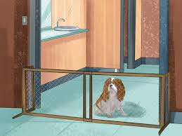 4 Ways to Keep Pets off the Furniture wikiHow