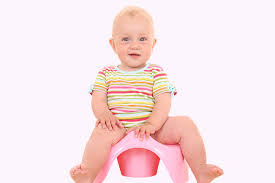 Potty Chairs For Toddlers by 5 Best Baby Toilet Seat For Your Little One