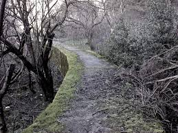 Scariest Halloween Attractions In California by 10 Most Haunted Hikes In California