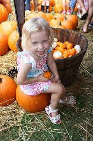 Pumpkin Patch Tampa by Hyde Park Village Hosts Fall Fest Tbo Com